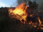 Zákaz rozdělávání ohňů v Praze