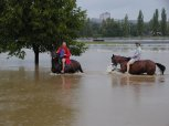 Povodeň 2002 - chuchelské závodiště 9